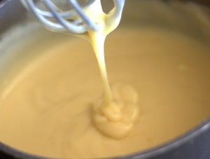 Creams and Pastes Used By Bakers & Pastry Chefs - Bavarian Cream